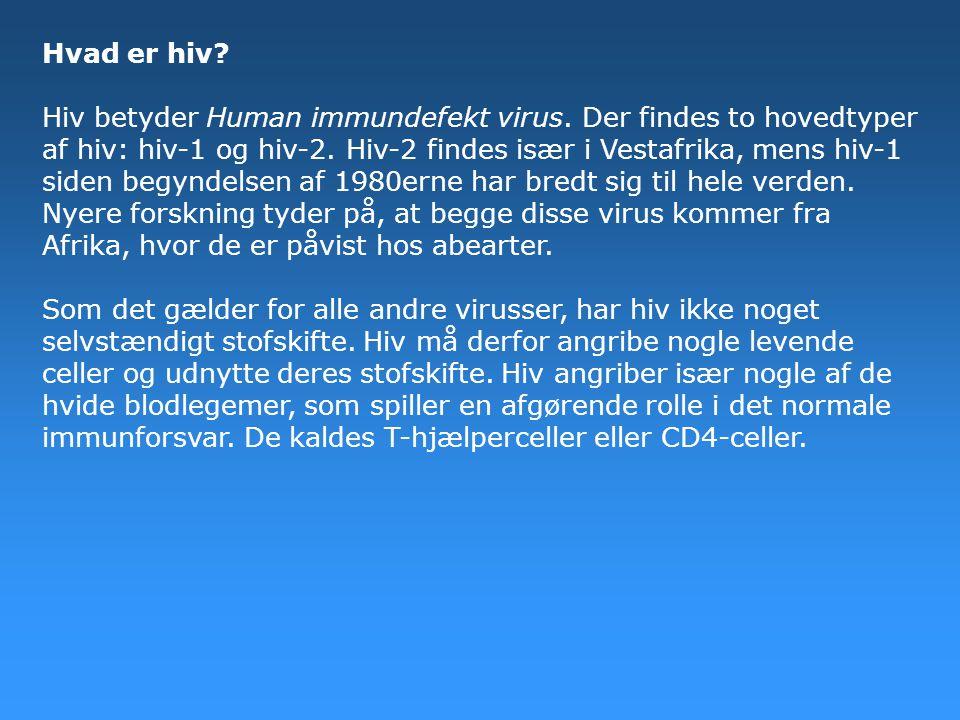 Hvad er hiv. Hiv betyder Human immundefekt virus