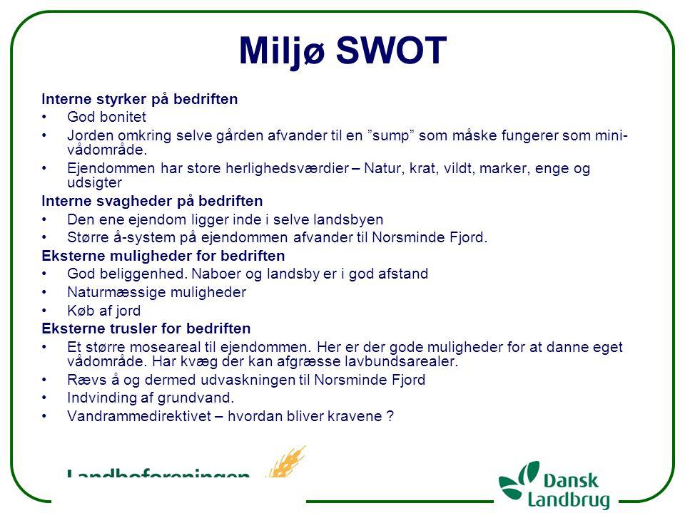 Miljø SWOT Interne styrker på bedriften God bonitet