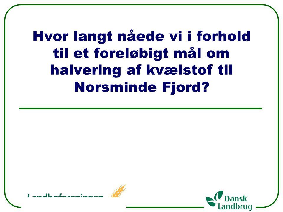 Hvor langt nåede vi i forhold til et foreløbigt mål om halvering af kvælstof til Norsminde Fjord