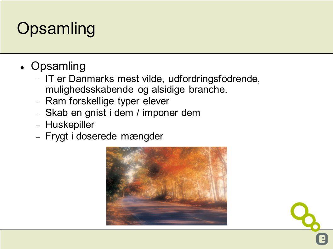 Opsamling Opsamling. IT er Danmarks mest vilde, udfordringsfodrende, mulighedsskabende og alsidige branche.