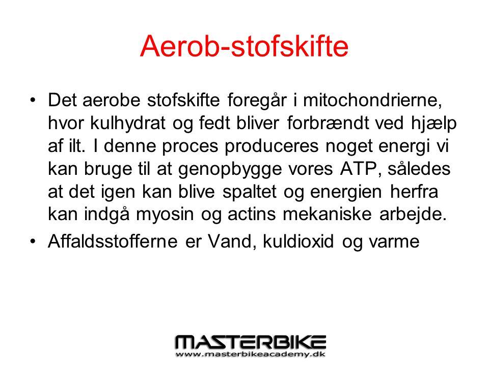Aerob-stofskifte