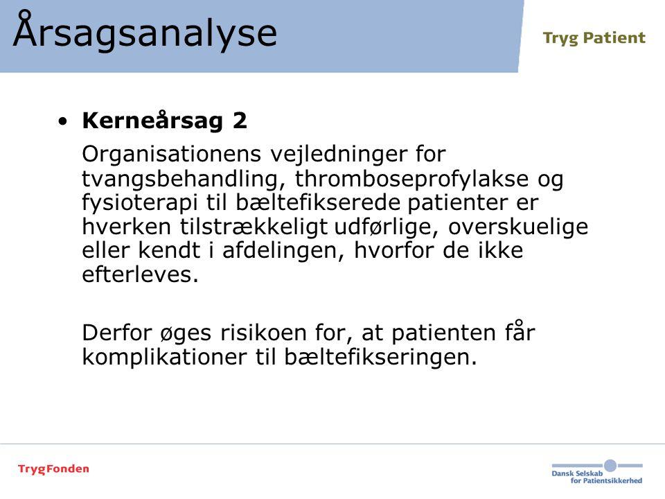Årsagsanalyse Kerneårsag 2.