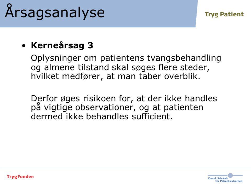 Årsagsanalyse Kerneårsag 3.