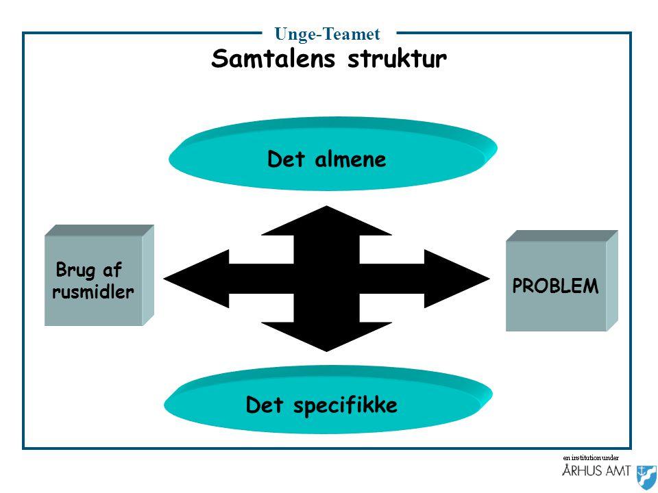 Samtalens struktur Det almene Det specifikke Brug af rusmidler PROBLEM