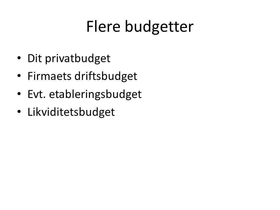 Flere budgetter Dit privatbudget Firmaets driftsbudget