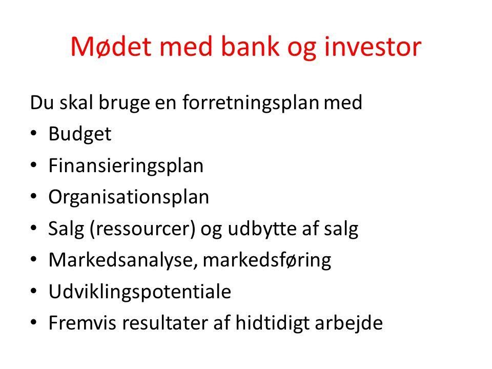 Mødet med bank og investor
