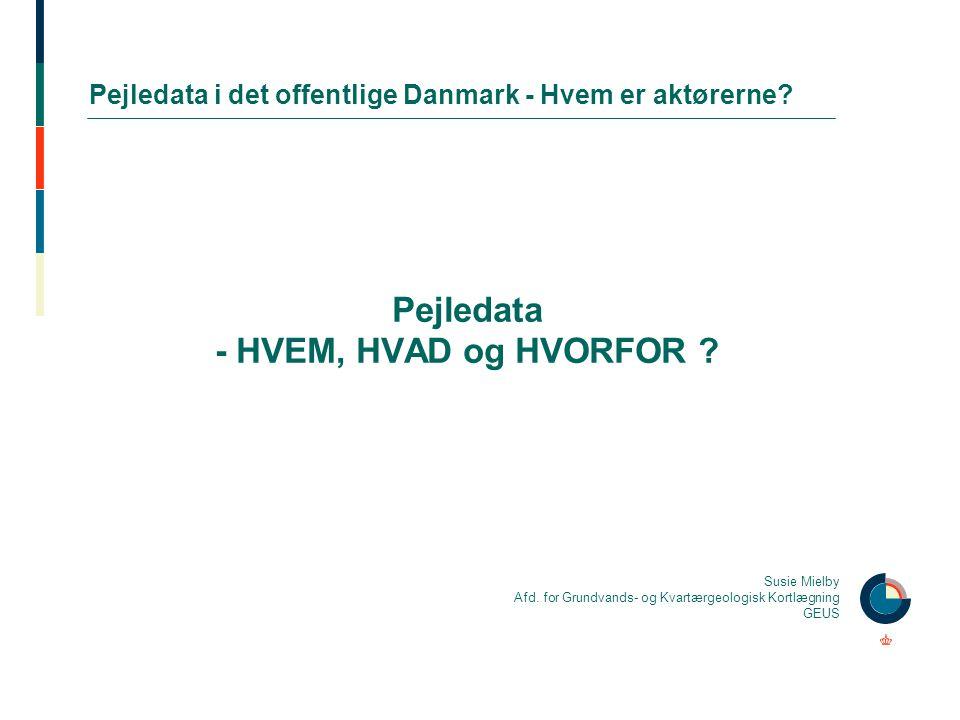 Pejledata i det offentlige Danmark - Hvem er aktørerne
