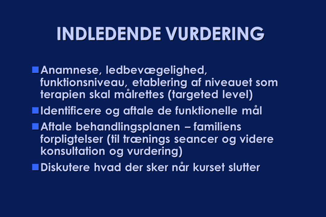 INDLEDENDE VURDERING Anamnese, ledbevægelighed, funktionsniveau, etablering af niveauet som terapien skal målrettes (targeted level)