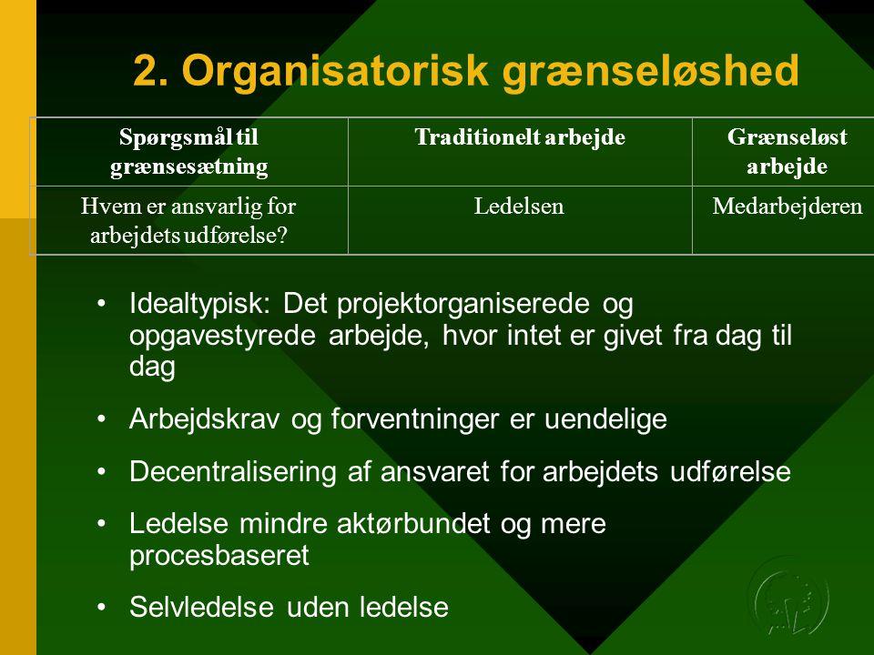 2. Organisatorisk grænseløshed