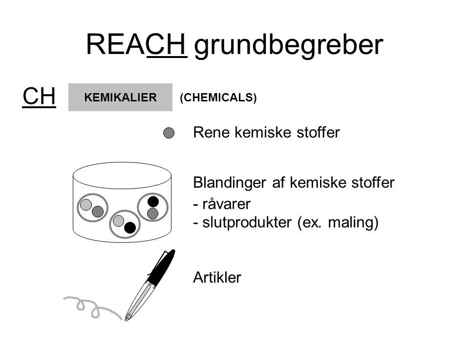 REACH grundbegreber CH Rene kemiske stoffer