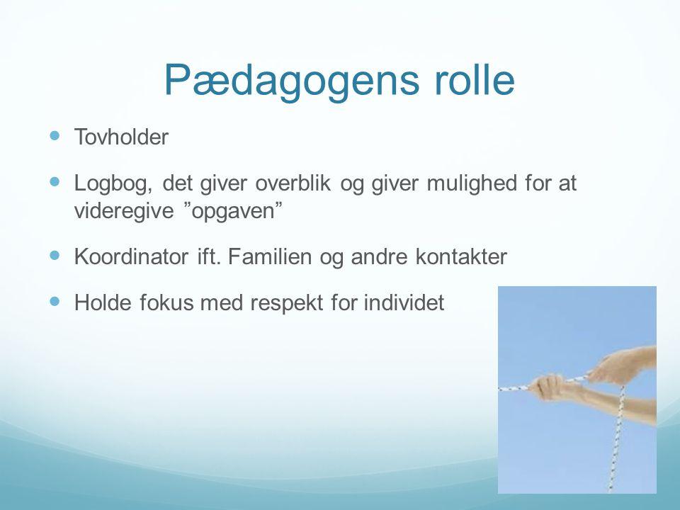 Pædagogens rolle Tovholder