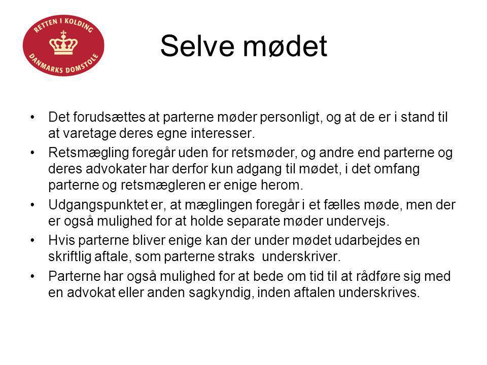 Helle Fløystrup Selve mødet. Det forudsættes at parterne møder personligt, og at de er i stand til at varetage deres egne interesser.