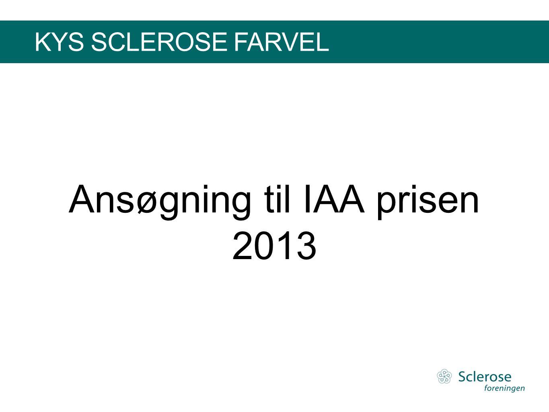 Ansøgning til IAA prisen 2013