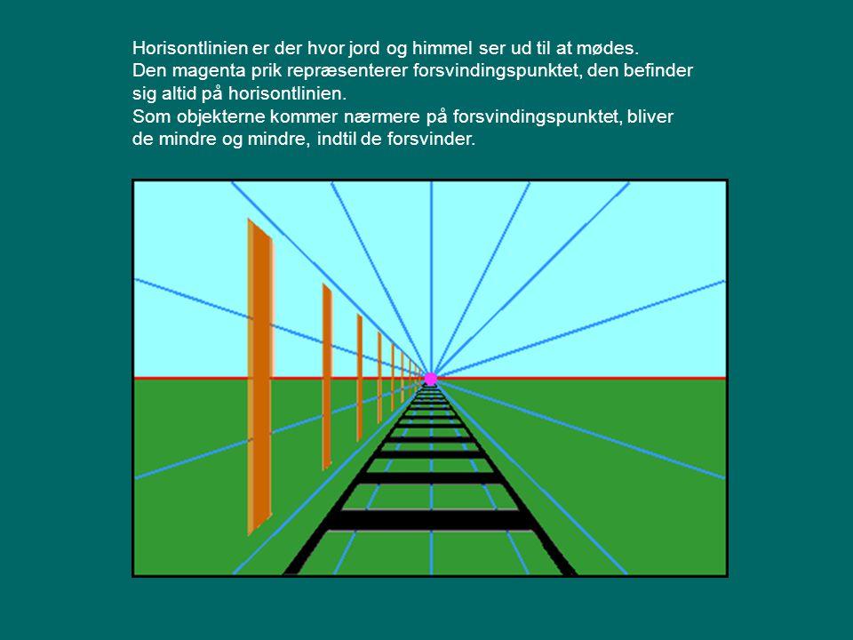 Horisontlinien er der hvor jord og himmel ser ud til at mødes.