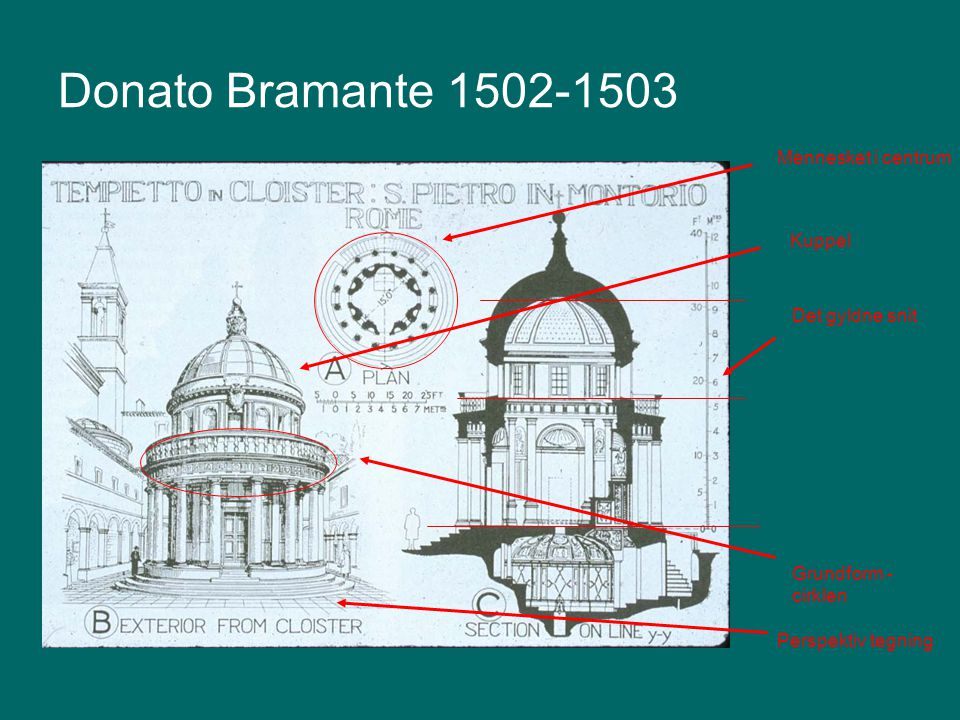 Donato Bramante 1502-1503 Mennesket i centrum Kuppel Det gyldne snit