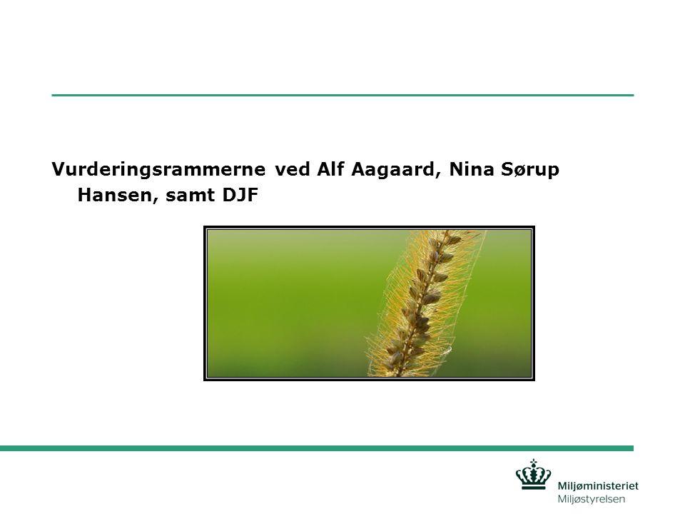 Vurderingsrammerne ved Alf Aagaard, Nina Sørup Hansen, samt DJF