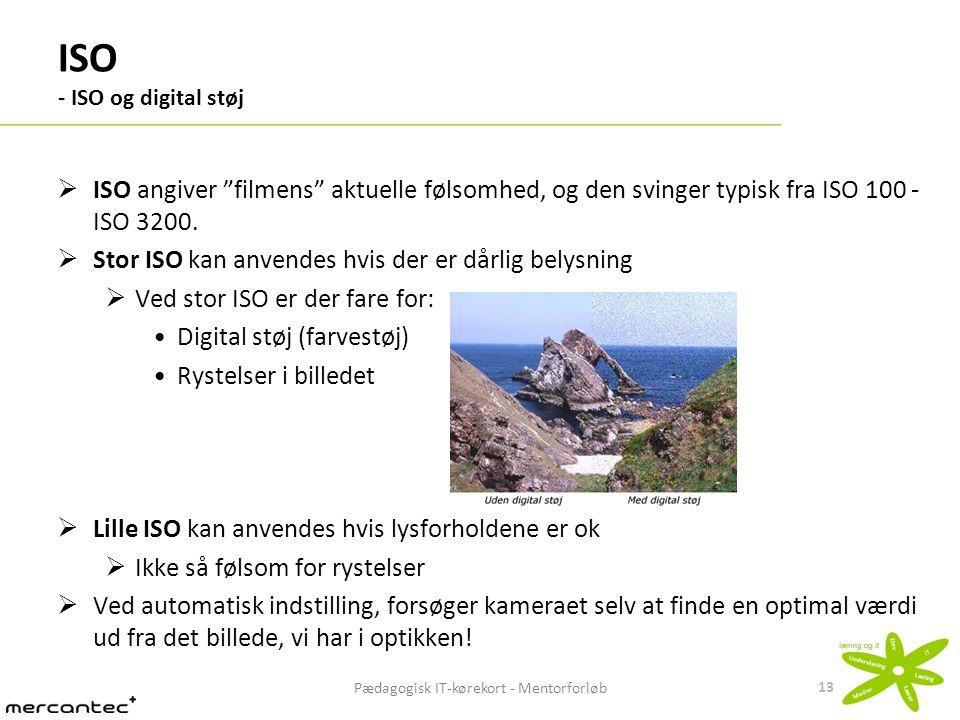 ISO - ISO og digital støj