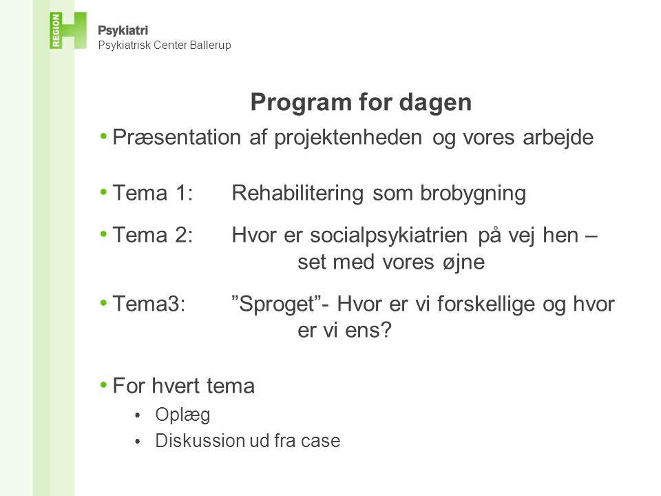 Program for dagen Præsentation af projektenheden og vores arbejde