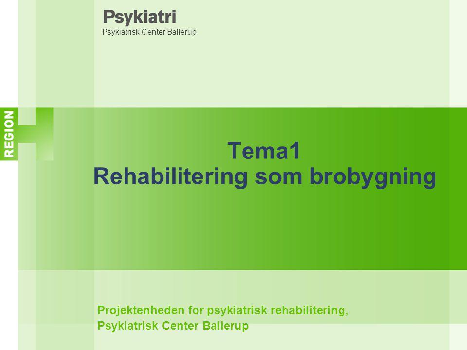 Tema1 Rehabilitering som brobygning