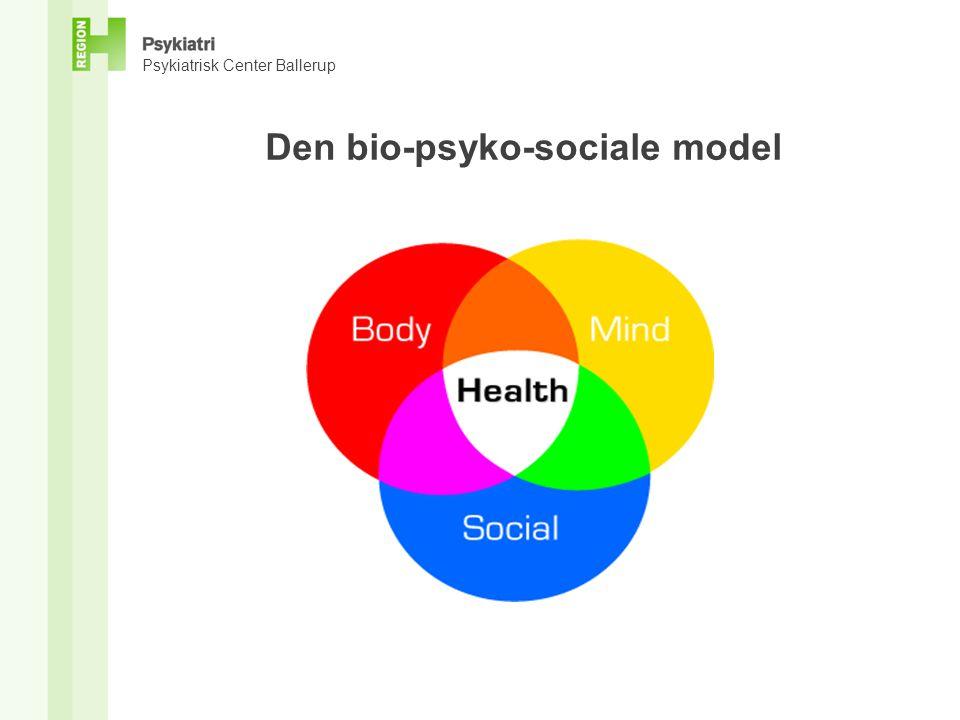 Den bio-psyko-sociale model