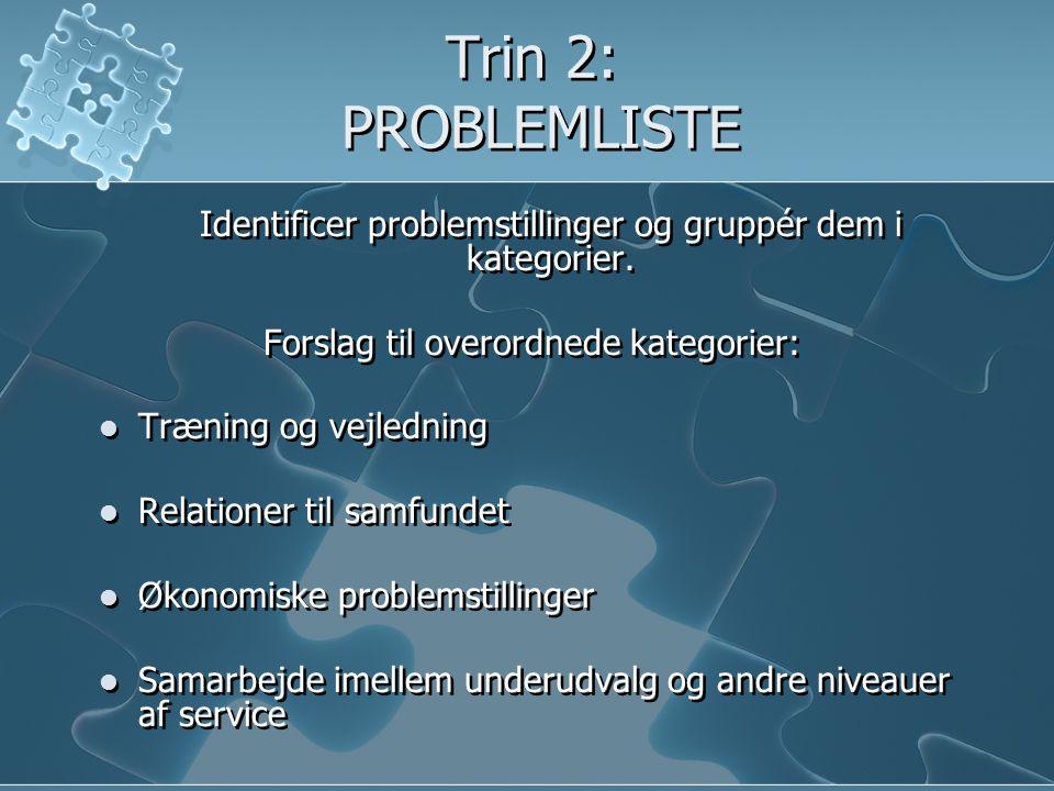 Trin 2: PROBLEMLISTE Identificer problemstillinger og gruppér dem i kategorier. Forslag til overordnede kategorier:
