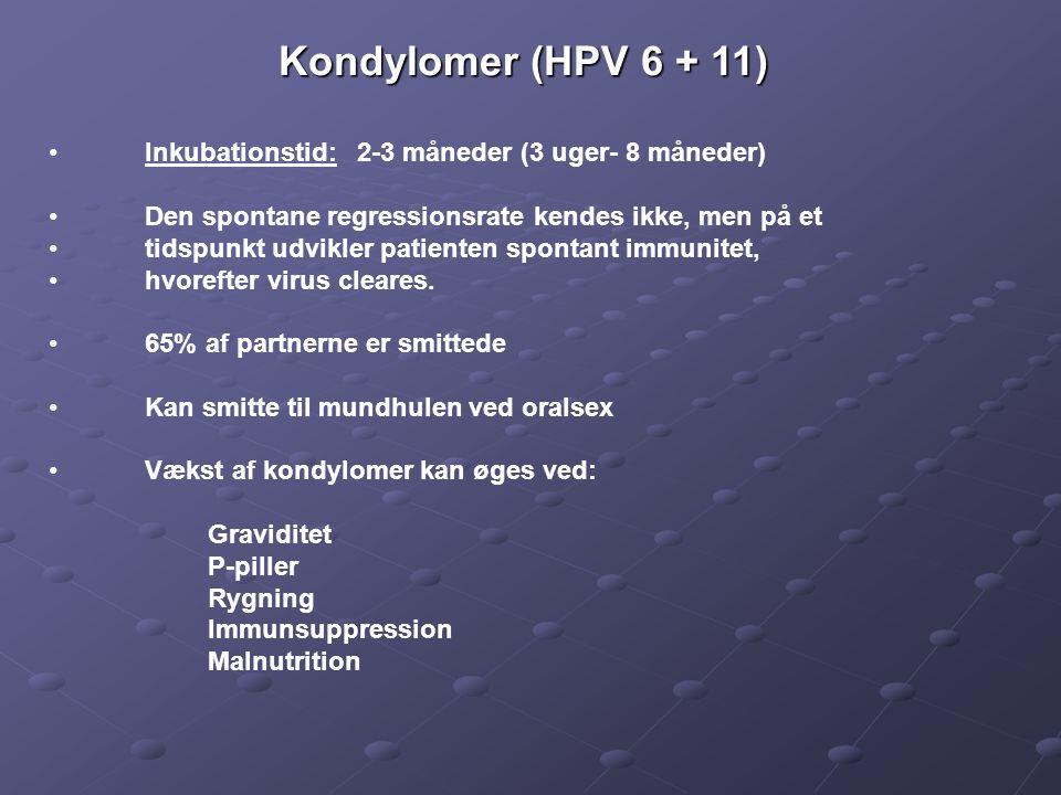 Kondylomer (HPV 6 + 11) Inkubationstid: 2-3 måneder (3 uger- 8 måneder) Den spontane regressionsrate kendes ikke, men på et.