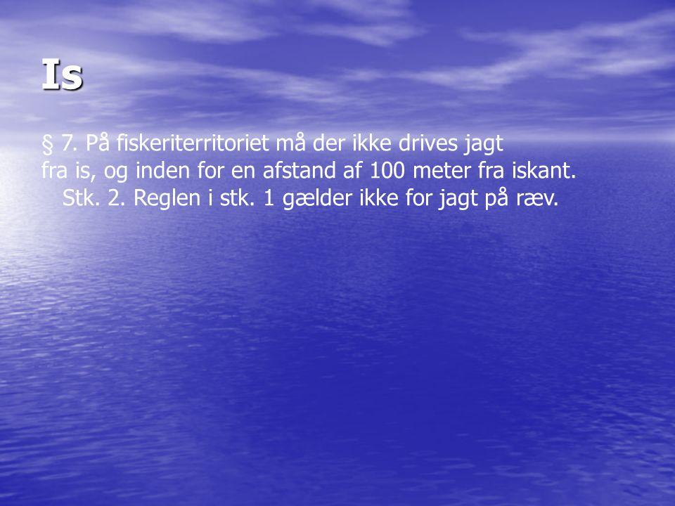 Is § 7. På fiskeriterritoriet må der ikke drives jagt