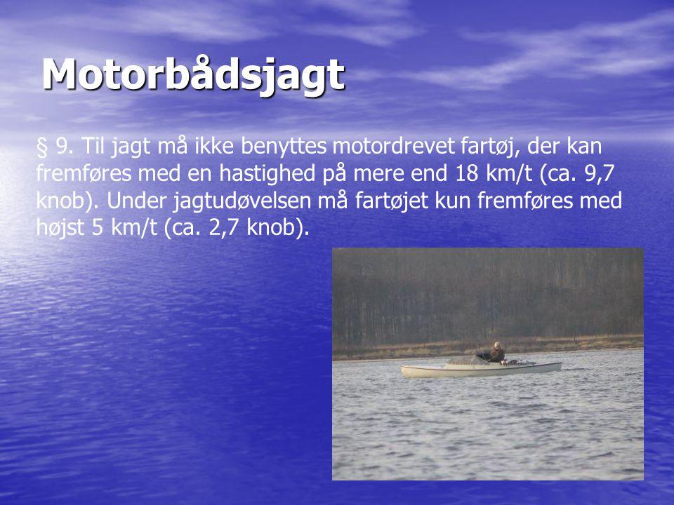 Motorbådsjagt