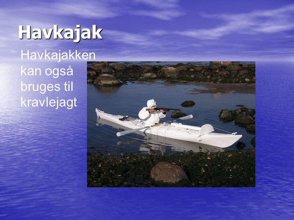 Havkajak Havkajakken kan også bruges til kravlejagt