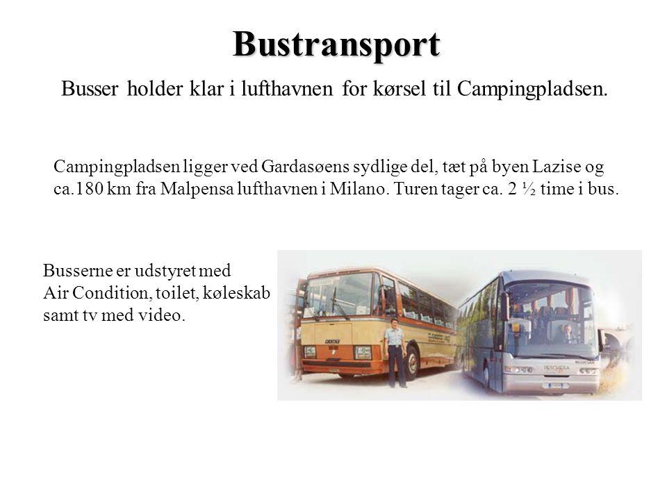 Busser holder klar i lufthavnen for kørsel til Campingpladsen.