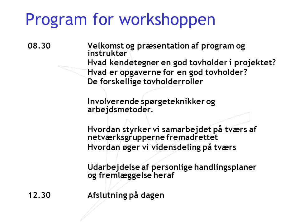 Program for workshoppen