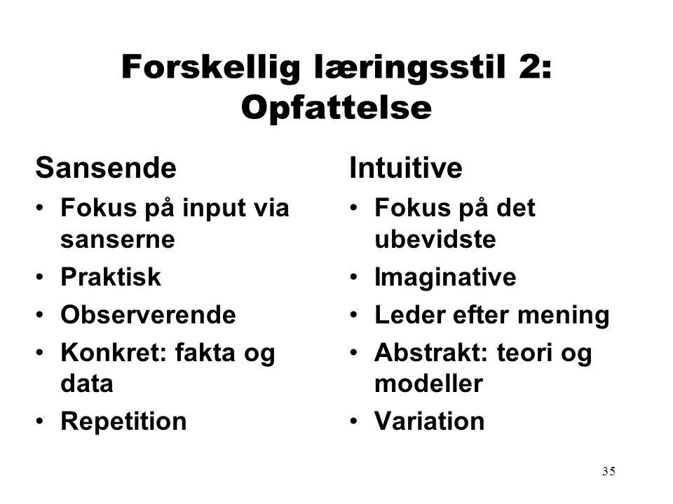 Forskellig læringsstil 2: Opfattelse