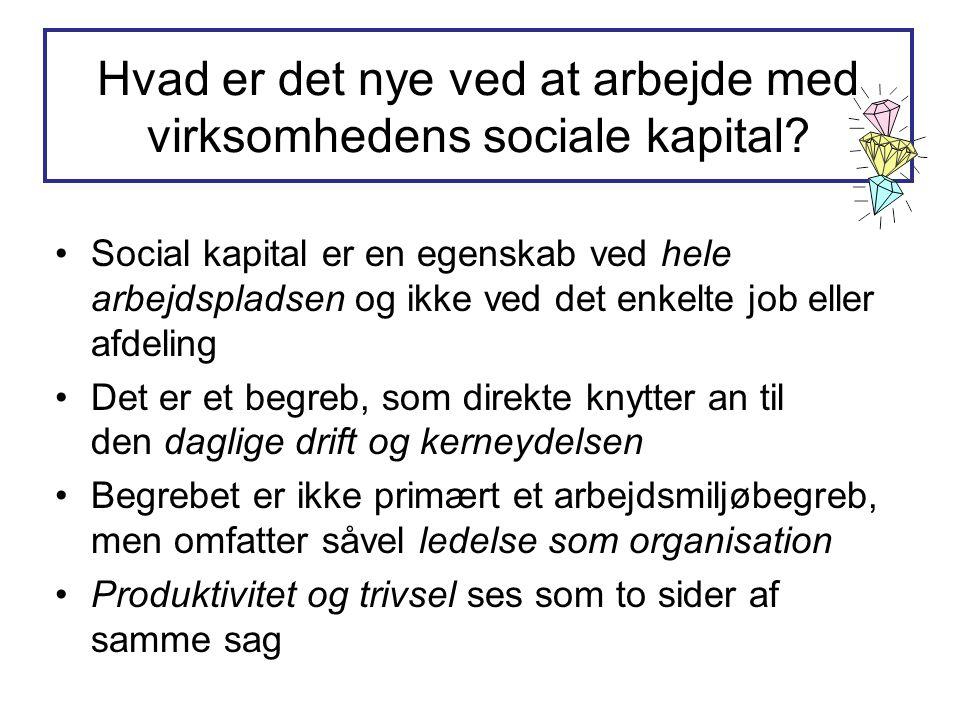 Hvad er det nye ved at arbejde med virksomhedens sociale kapital