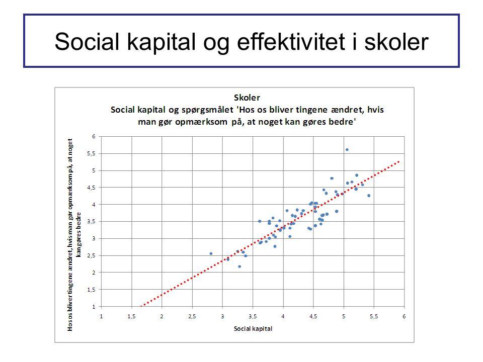 Social kapital og effektivitet i skoler