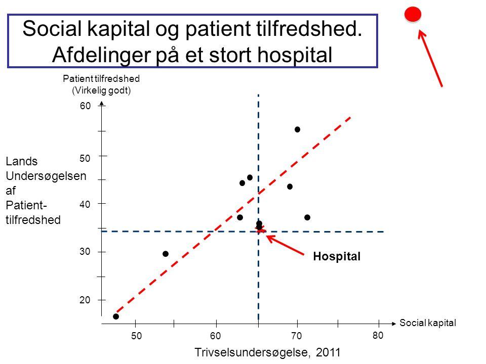 Social kapital og patient tilfredshed. Afdelinger på et stort hospital