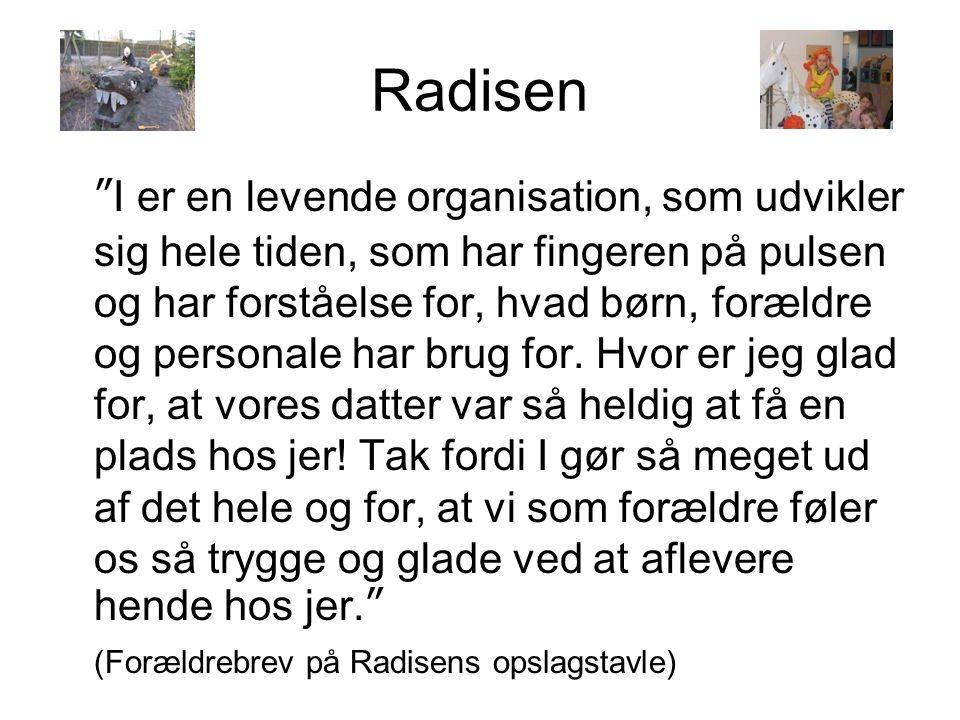 Radisen