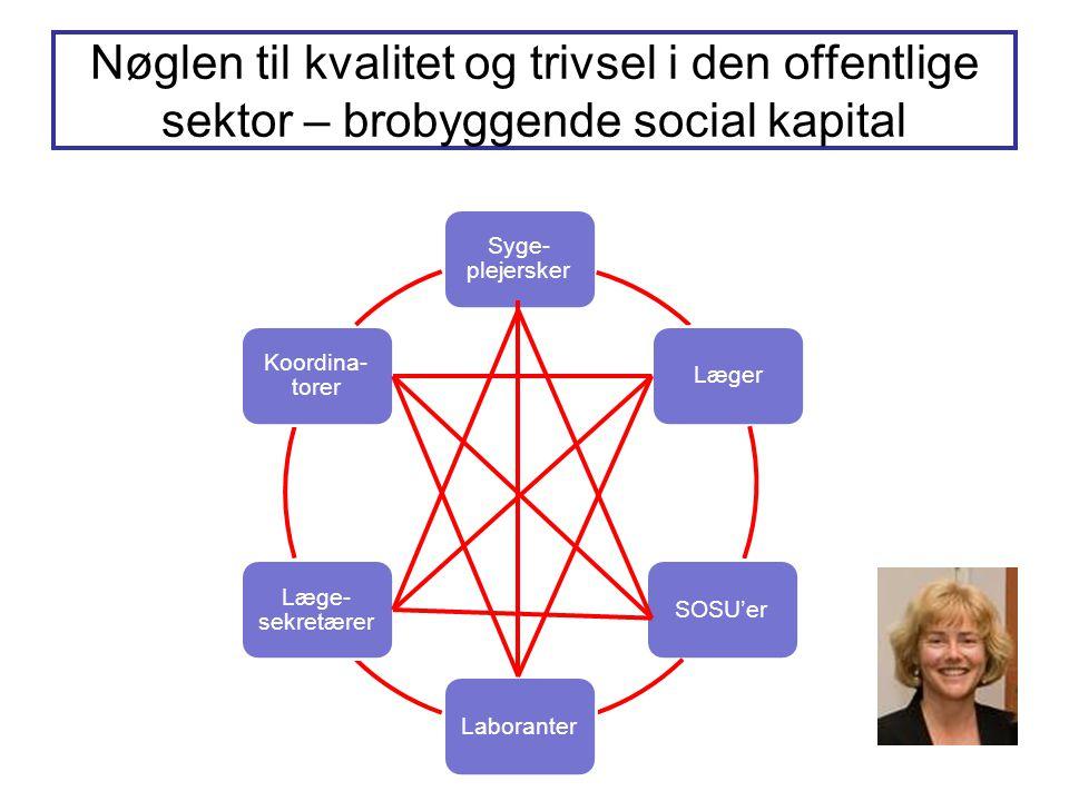 Nøglen til kvalitet og trivsel i den offentlige sektor – brobyggende social kapital