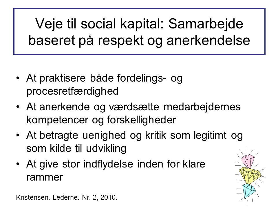 Veje til social kapital: Samarbejde baseret på respekt og anerkendelse