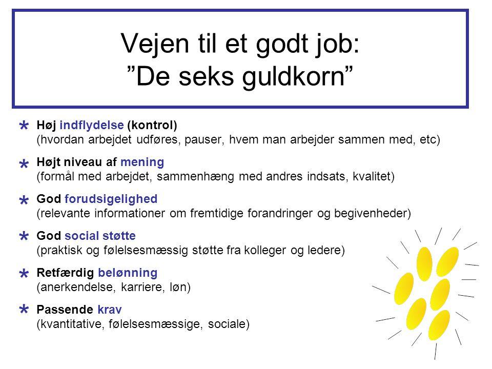 Vejen til et godt job: De seks guldkorn