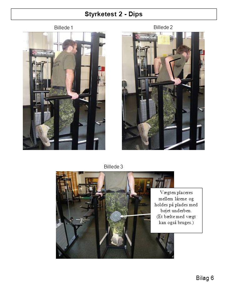 Styrketest 2 - Dips Bilag 6 Styrketest 1 - Lunges Billede 1 Billede 2