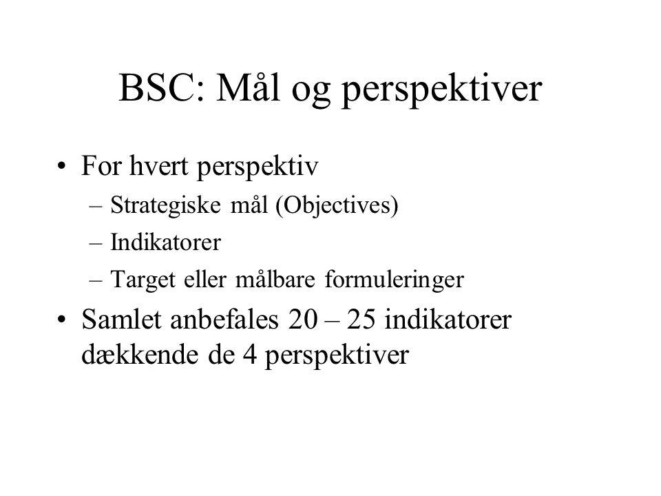 BSC: Mål og perspektiver