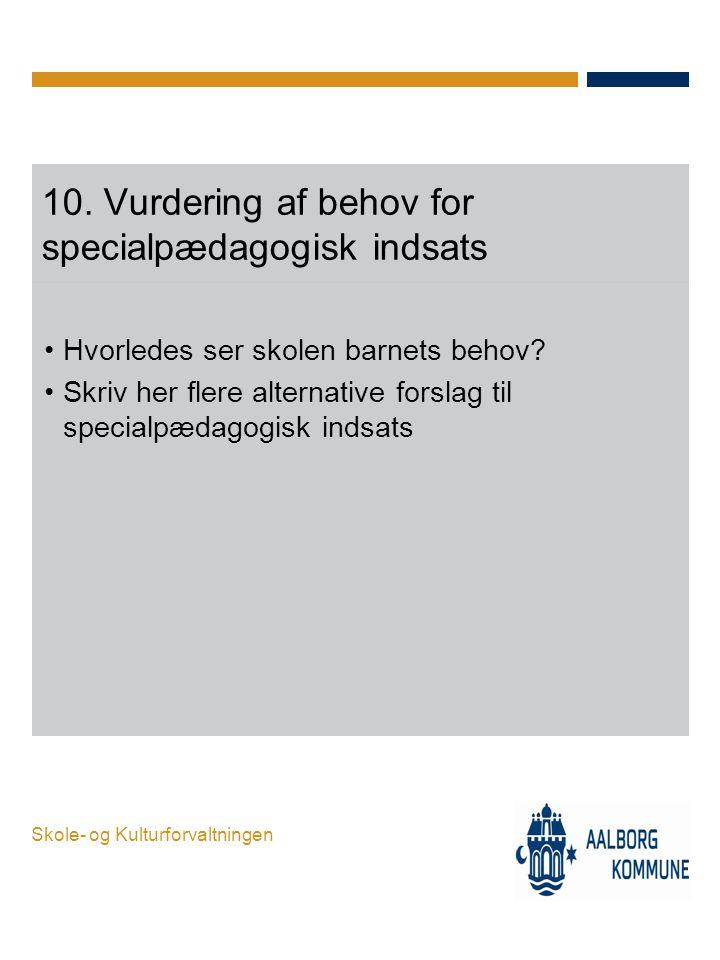 10. Vurdering af behov for specialpædagogisk indsats