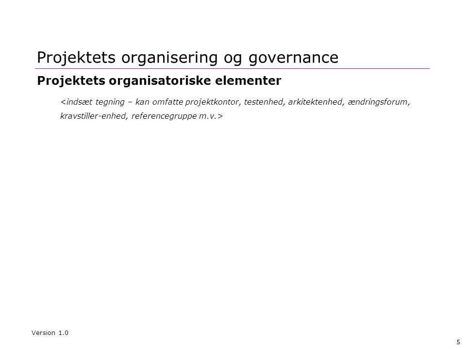 Projektets organisering og governance