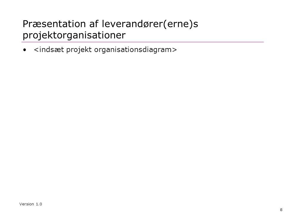 Præsentation af leverandører(erne)s projektorganisationer