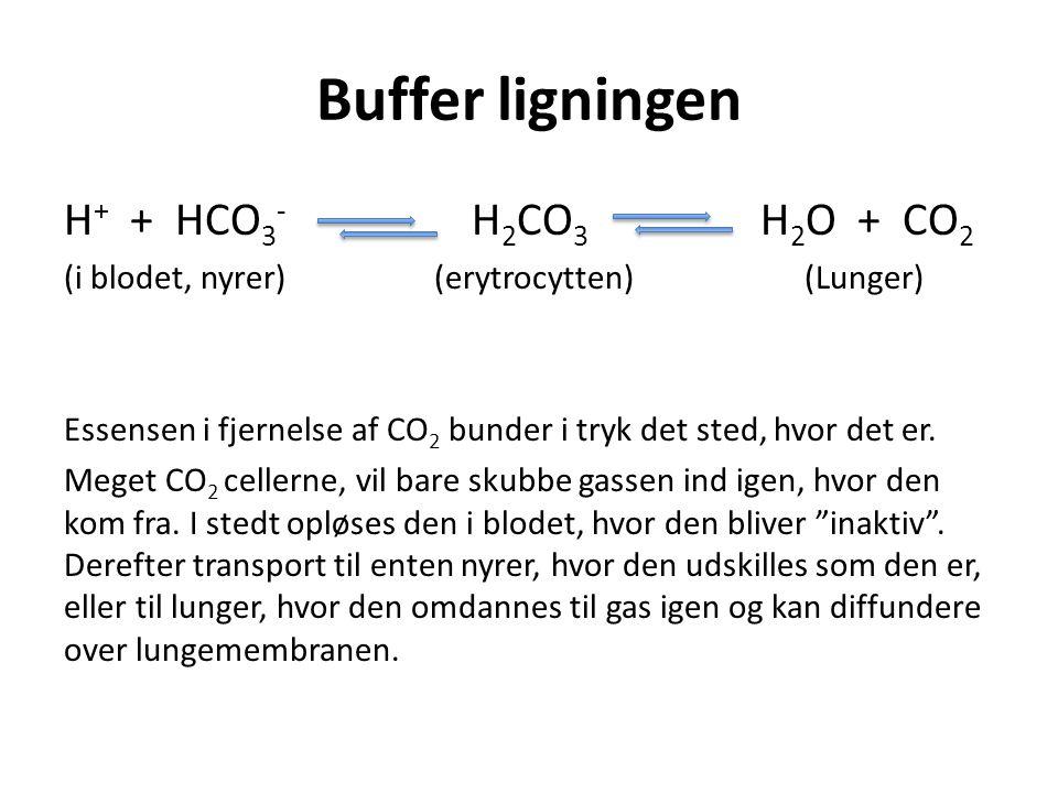 Buffer ligningen H+ + HCO3- H2CO3 H2O + CO2
