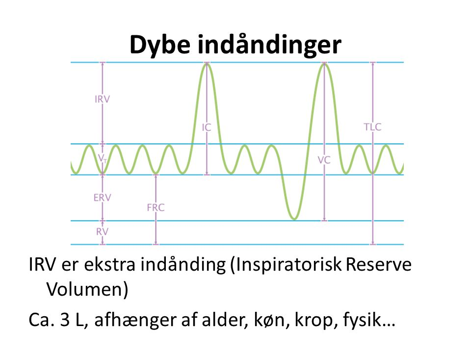 Dybe indåndinger IRV er ekstra indånding (Inspiratorisk Reserve Volumen) Ca.