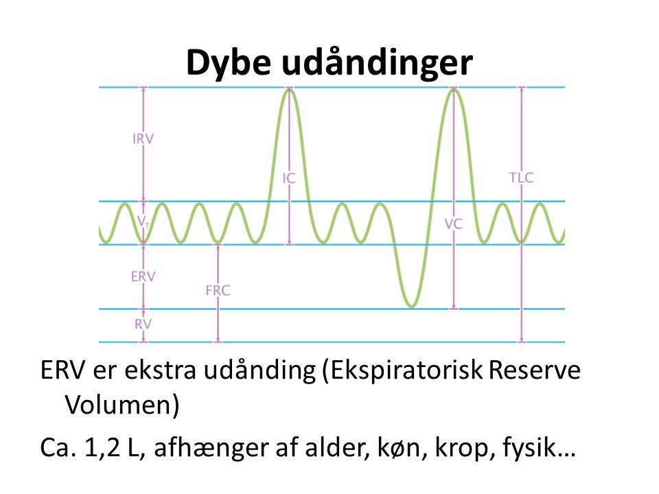 Dybe udåndinger ERV er ekstra udånding (Ekspiratorisk Reserve Volumen) Ca.