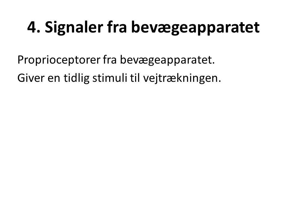 4. Signaler fra bevægeapparatet