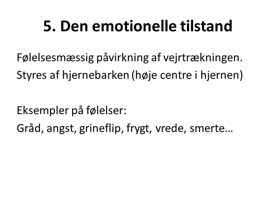 5. Den emotionelle tilstand