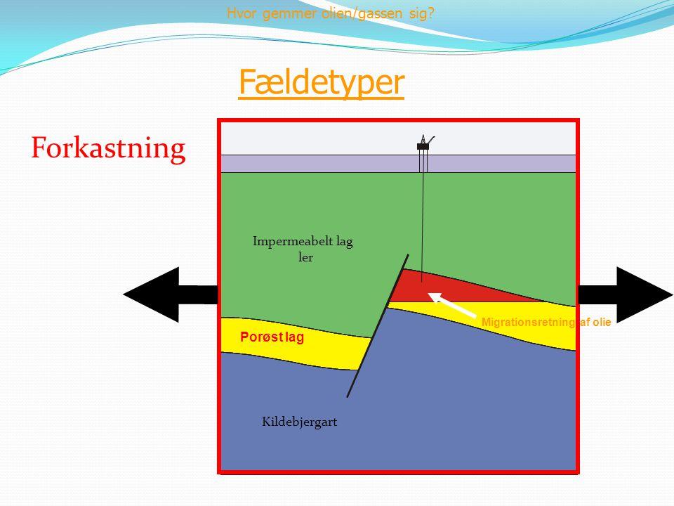 Fældetyper Forkastning Hvor gemmer olien/gassen sig Impermeabelt lag
